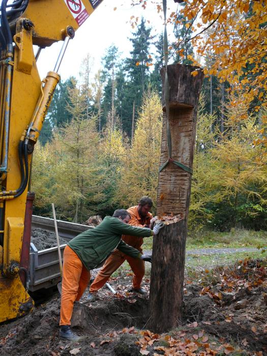 NS Lesem Království – 2007 – Budujeme
